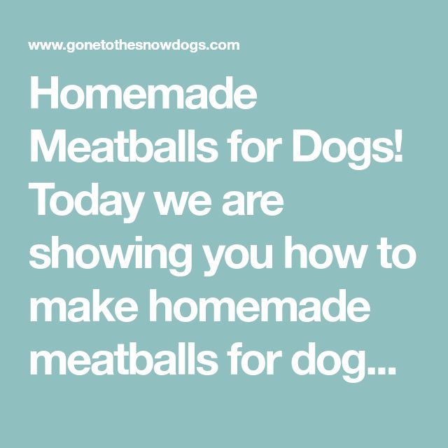 Homemade Meatballs for Dogs!  Today we are showing you how to make homemade meatballs for dogs.  Who doesn't love a good homemade meatball?  I know I do, and so to the dogs!  This easy DIY Dog Treat recipe will have your dogs happy as can be! Homemade Meatballs for Dogs  Ingredients 1 pound lean ground beef (I used 95/5) 1 Continue Reading