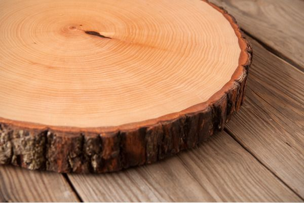 DIY on how to make your own wood slice serving board (perfect DIY gift for the boyfriend!)  DIY planche de service avec rond de bois