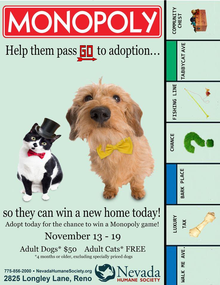 Monopoly Adoption Game at Nevada Humane Society