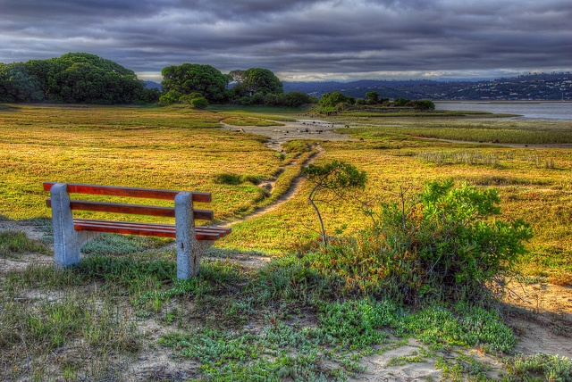 Bench with a view, Knysna, South Africa