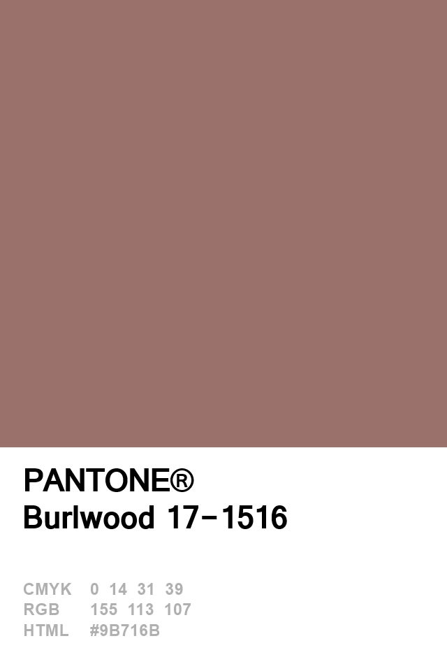 Pantone Burlwood 17-1516 Colour of The Day 16 January