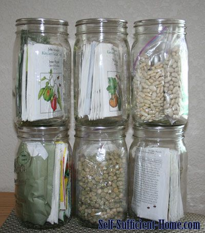 Storing Vegetable Seeds...duh, why haven't I though of this.  Could even be nicely displayed!