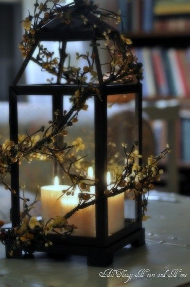 love the lantern idea....especially as a centerpiece...or even on the mantle.