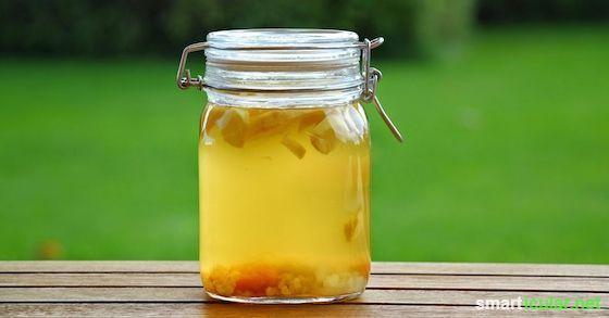 Wasserkefir selbst herstellen - eine leckere, gesunde und umweltfreundliche Alternative zu Soft-Drinks