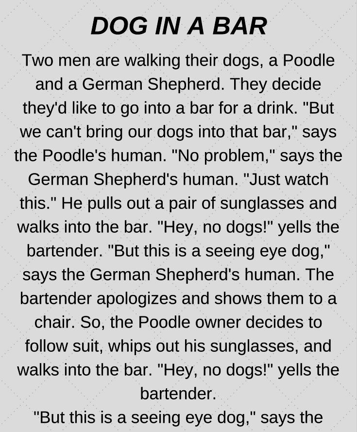 Dog At The Bar Funny Story Funny Long Jokes Funny Stories