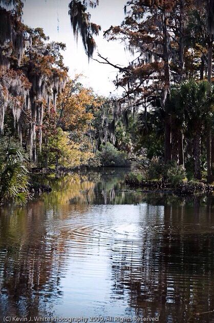 City Park, New Orleans Louisiana