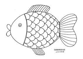 Kapor - omaľovánka