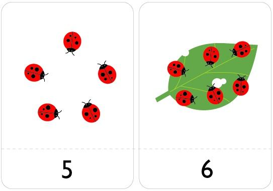 lady bug number flash cards homeschool preschool printables kindergarten homeschool. Black Bedroom Furniture Sets. Home Design Ideas