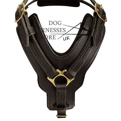 handmade leather dog harness - Tap the pin for the most adorable pawtastic fur baby apparel! You'll love the dog clothes and cat clothes! <3