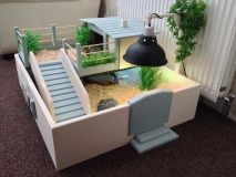 Best 25 tortoise table ideas on pinterest tortoise vivarium stylish upper level with built in hide and food area free height adjustable lamp arm when bought with a lamp holdere table comes ready built solutioingenieria Choice Image