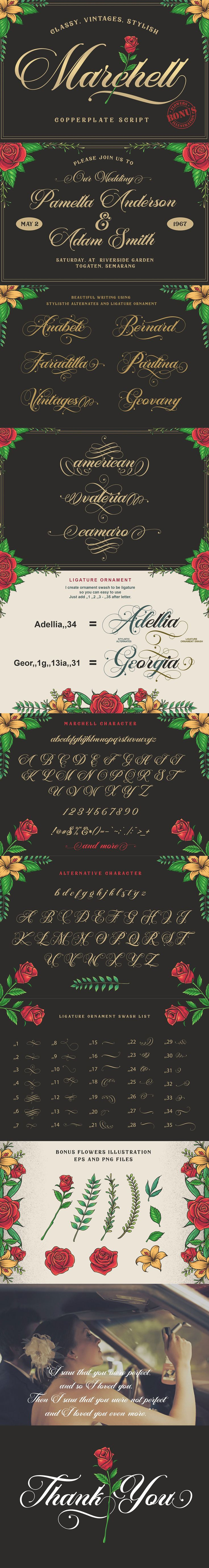 Marchell Script, this is a copperplate style #font that looks #classic, #vintage and #retro but still looks elegant, #luxurious and georgeous. This font is very suitable in use for #wedding invitations, #logotype, badge, etc. ( #typography #font #branding #fashion #lettering #inspiration #creative #webdesign )