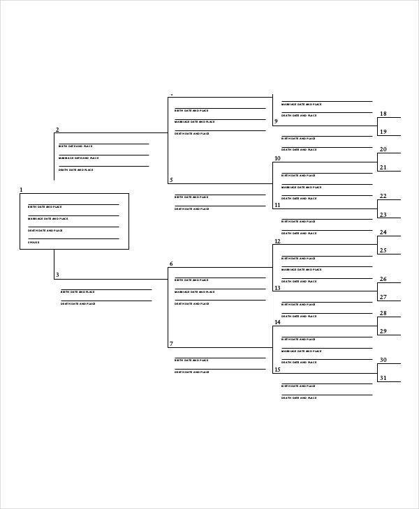 Best 25 printable family tree ideas on pinterest family tree 5 generation family tree template pronofoot35fo Choice Image