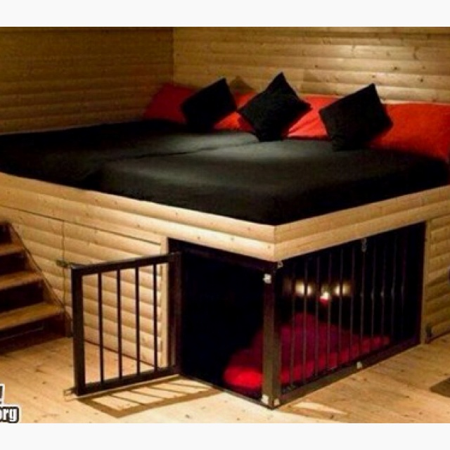 Awesome Loft Bed Couch Area With A Built In Dog Kennel Home Renos Pinterest Dog Kennels