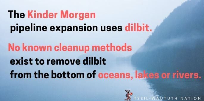 HEY TRUDEAU ~ According to the US Dept of Trans, #KinderMorgan & subsidiaries' were responsible for the following from 2003-2014...   ✴️ At least 180 spills!   ✴️ Evacuations!   ✴️ Explosions!   ✴️ Fires!   ✴️ Along with fatalities!  #ProtectTheInlet #SalishSea #TrudeauMustGo