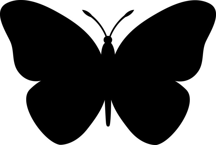 butterfly images for silhouette cameo | Butterfly Silhouette Design