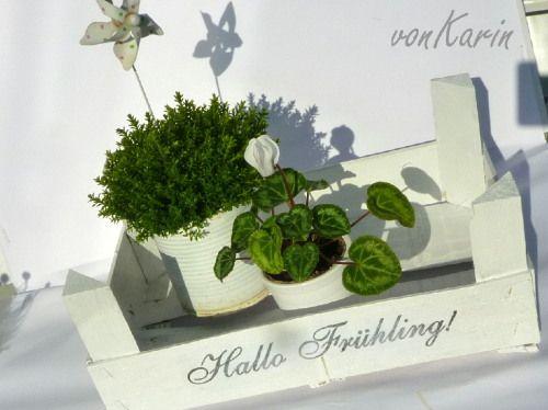 Upcyclig - Mandarinenkiste goes Frühling. http://vonKarin.blog.de