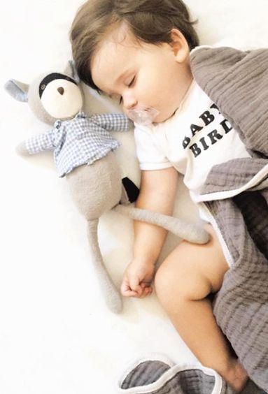 Sleeping baby bird. Little one all cuddled up for naptime with Max the Raccoon wearing gingham shirt. Dolls by Hazel Village are handmade and fair trade, and made from organic cotton. Sustainable moms love shopping Noble Carriage, because eco-friendly ethical baby clothes and accessories are hand-picked for stylish little boho babes.