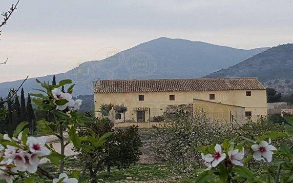 Alojamiento Rural Casa Marsilla se encuentra a los pies de la Sierra Espuña y Sierra de Pedro Ponde en Murcia hasta 11 personas.