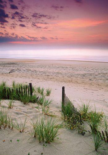 Sunrise, Folly Beach, South Carolina Art Print by Anonymous Easyart.com