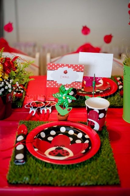 Lady Bug Garden Party: Individual set ups