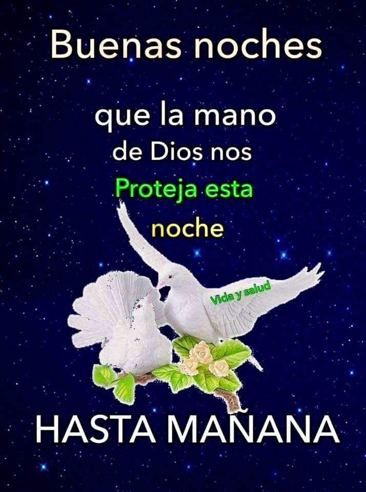 Pin By Silvia Vasquez On Buenas Noches Y Dulces Suenos Good Night Prayer Motivational Phrases Night Prayer