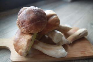 Ada w kuchni: Wykwintny makaron z prawdziwkami