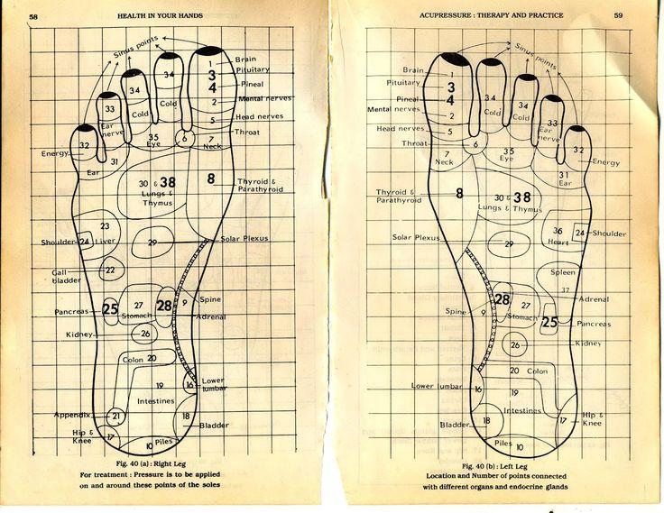 Feet reflexology | Acupressure, Reflexology chart ...