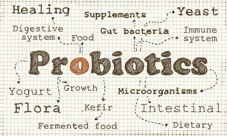 Προβιοτικά: Γιατί είναι πολύτιμα για τον οργανισμό. Ο όρος προβιοτικά αποτελείται από δύο ρίζες, μια λατινική και μια ελληνική. Το προ- είναι από το λατινικό pro και σημαίνει υπέρ. Το βιοτικό σχετίζεται με τη ζωή. Άρα το προ-βιοτικό δηλώνει μια ουσία που «ζωογονεί». Τα πρεβιοτικά, τα οποία επίσης ακούμε πολύ συχνά τα