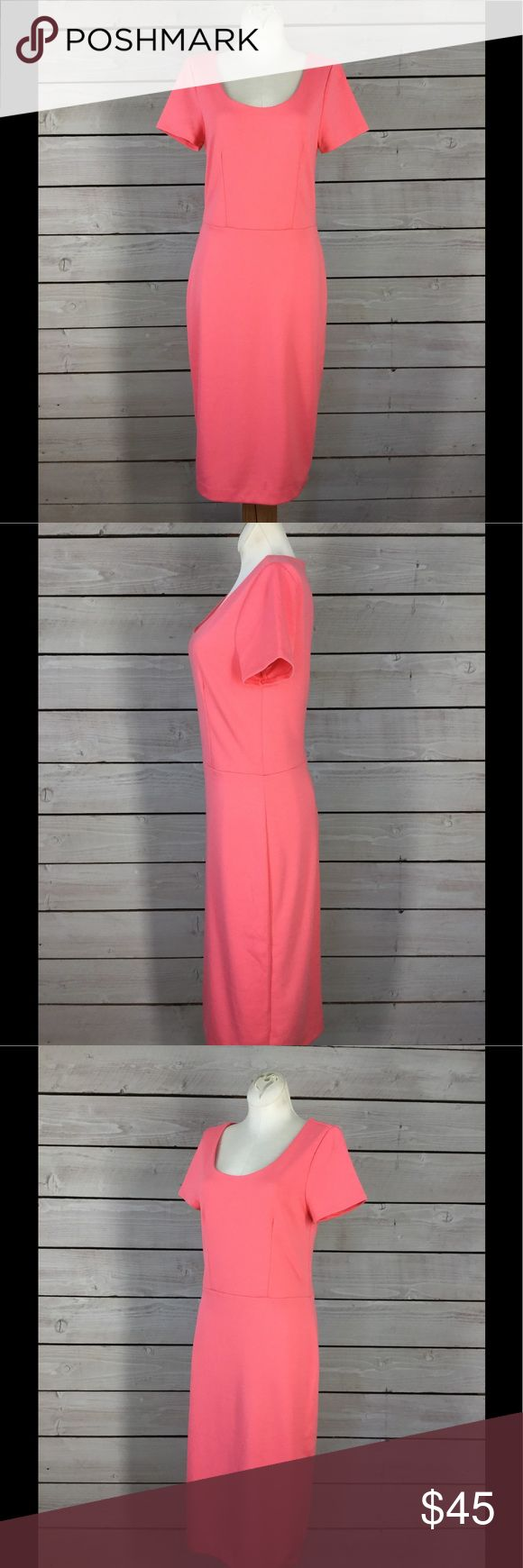 NWT The Limited Pink Dress Great for the office or weekend getaway! NEVER WORN!! In excellent new condition. Body is 77% polyester 20% rayon 3% spandex. Lining is 100% polyester.   Measurements are taken lying flat. Bust: 15.5 Length: 42 Waist: 14   Please inquire for more information on where the exact measurement was taken prior to purchase. Available for questions and concerns. Thank you for your interest, for more great finds please view my other listings! The Limited Dresses