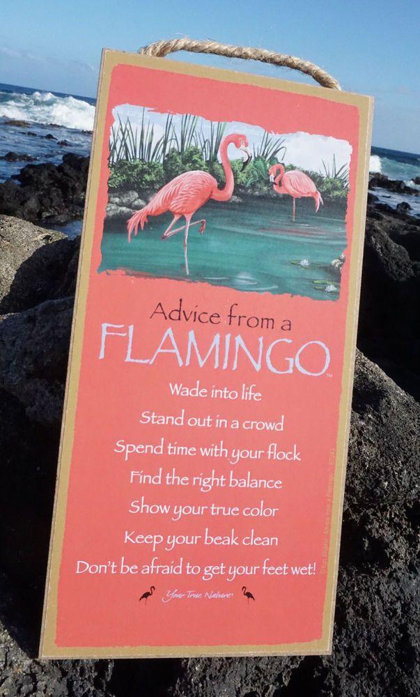 ADVICE FROM A FLAMINGO   GET FEET WET SHOW TRUE COLOR Pink Beach Home Decor  Sign