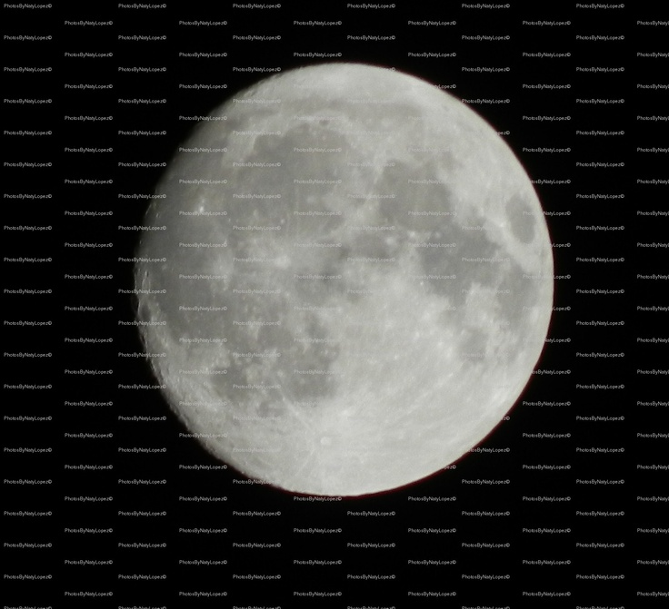 """""""You have to be able to appreciate these things. How many people can say there was a full moon last night and appreciate it?"""" -Sandy Miller (journalist/news anchor)"""