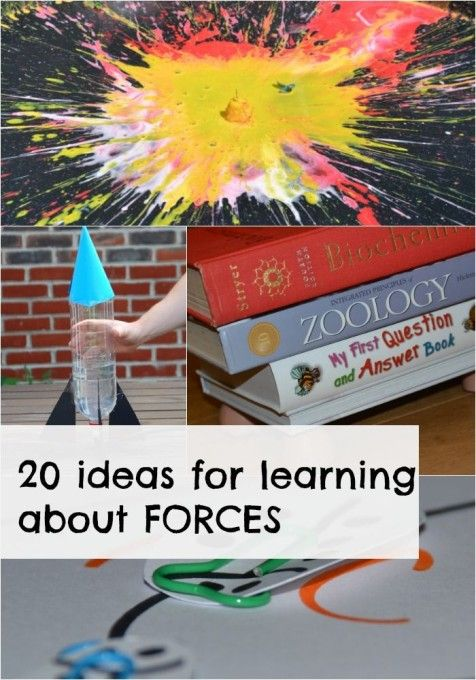 Another great resource to learn about physics and forces #raisinglearners #homeschooling