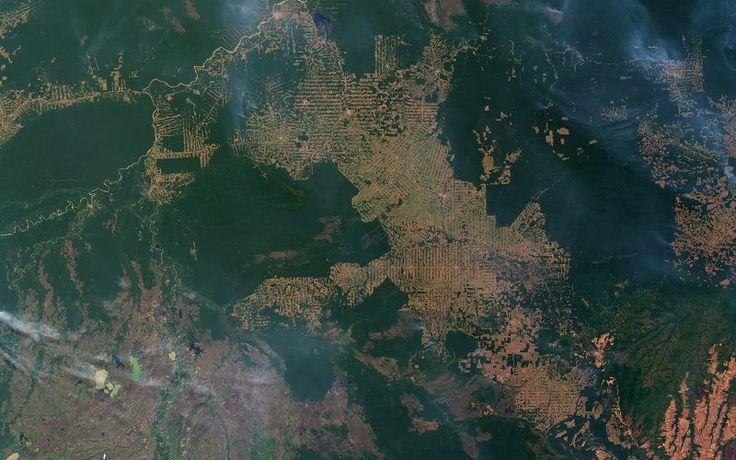 Estimativa do PRODES, do INPE, aponta a taxa de 5.831 km2 de desmatamento na Amazônia no período de agosto de 2014 a julho de 2015...