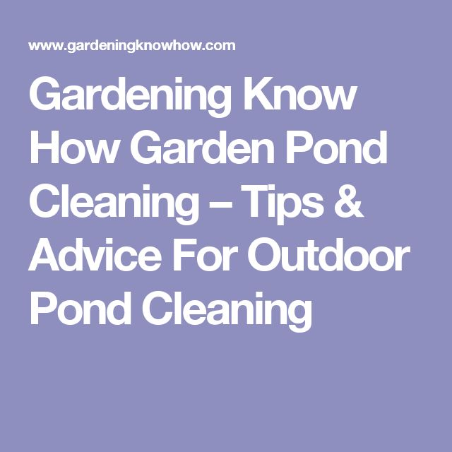 Garden Pond Cleaning – Tips & Advice For Outdoor Pond Cleaning