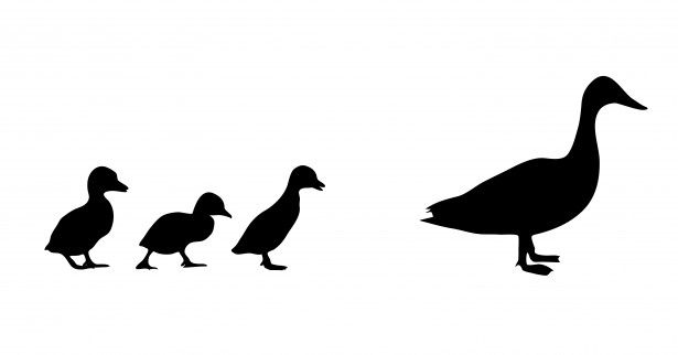 duck silhouette - Google Search