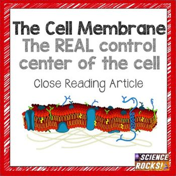 Help increase science literacy by using this close reading assignment on the cell membrane! From a young age, students learn that the nucleus is the control center of the cell. DNA is housed in the nucleus, and that genetic material determines our phenotypes.