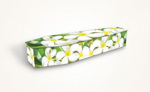Funeral caskets and coffins can be ordered online. Impressively designed coffins can be bought at low rates.