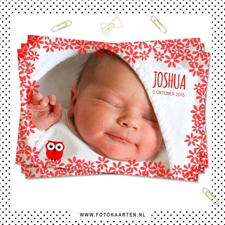 Voorbeeld geboortekaartje door fotokaarten.nl Wat is er leuker dan het zelf maken? Topkwaliteit en snel geleverd.