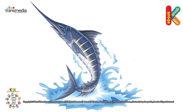 Ikan Pedang Ikan Perenang Paling Cepat