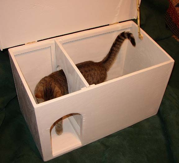 17 Best Images About Pet Furniture On Pinterest Cats