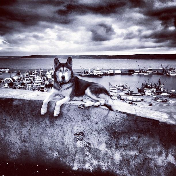 Instagram photo by @Sefa Yamak via ink361.com