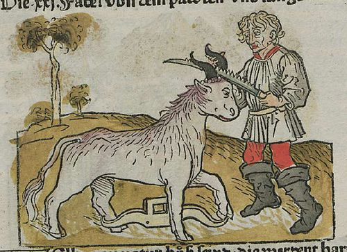 The fable from the Mille Fabulae et Una widget is Iuvencus et Rusticus, the story of a recalcitrant calf.