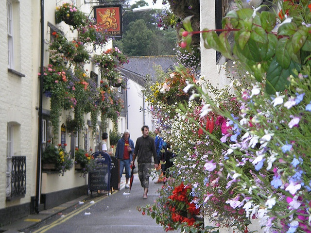 Want to go for a stroll? I do! On this Back-street Padstow, Cornwall