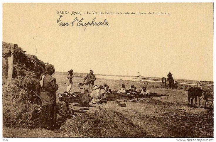 Syria – Raka, Syrie – Raka, Old Post Card, River Euphrates - Syrie