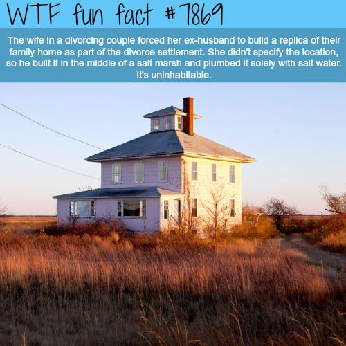 Spite houses - WTF fun facts
