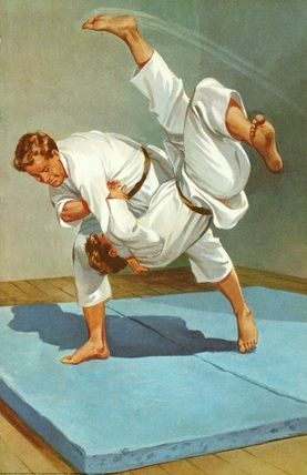 17 best images about judo on pinterest  tae kwon do mma