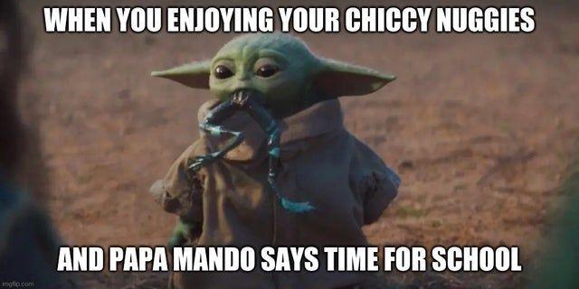 I Feel Bad For Him Babyyoda Yoda Meme Yoda Funny Yoda