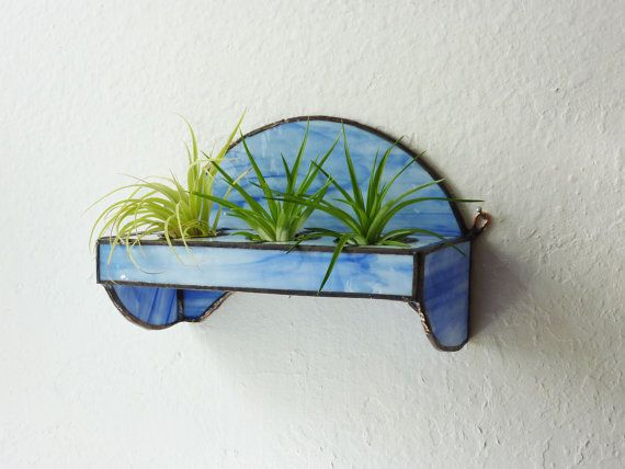 how cute for plants!