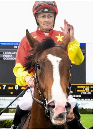 #profitablepunting Damian Browne has found himself in the box seat after a couple of hit-and-run missions in Sydney. #Horseracebetting #sportsbetting