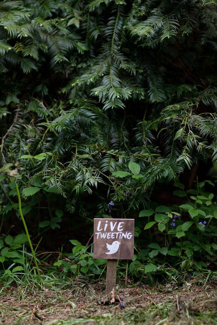 Live Tweeting Wooden Sign | Back to Nature | Forest | Social Media Humor | Pun | Twitter | Blogging | Outdoors